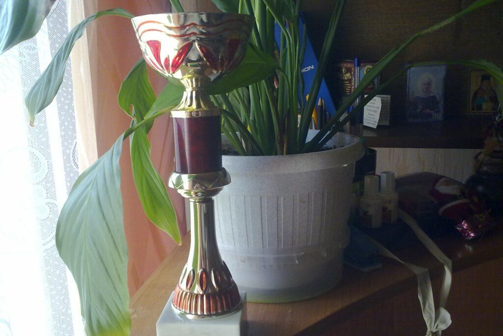 шахматы Жлобин 2019